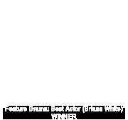 Best Actors Film Festival